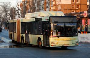 На маршруты Днепра выехали сочлененные автобусы большого класса