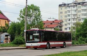 В тендере на поставку автобусов для Ивано-Франковска участвуют «Богдан Моторс» и украинский дилер белорусского МАЗа