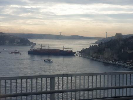 Шедший из Одессы контейнеровоз врезался в набережную в Стамбуле