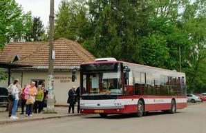 Ивано-Франковск не будет покупать белорусские автобусы