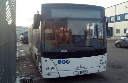 Тернополь закупил еще 20 новых автобусов МАЗ