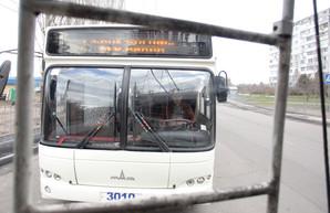 Строили, строили и наконец… не запустили. В Николаеве троллейбусы так и не возят пассажиров на Намыв