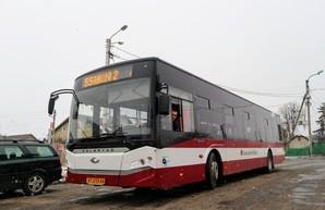 Городской голова Ивано-Франковска инициирует полную остановку общественного транспорта в городе
