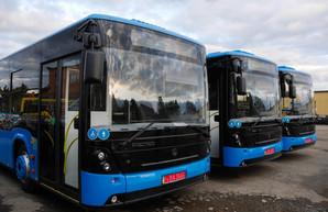 В Ужгороде прекращается работа общественного транспорта