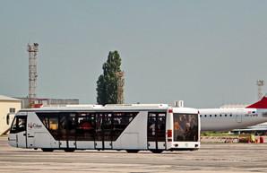 """В аэропорту Одессы работает приложение """"Дія"""": можно летать без паспорта"""