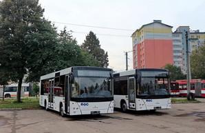 В Ивано-Франковске получили первые муниципальные автобусы средней вместимости