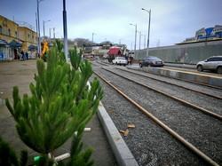 Реконструкция Новощепного Ряда: почти закончили укладку новых трамвайных путей (ФОТО)