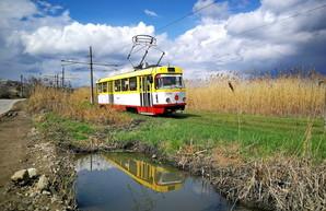В Одессе могут ввести еще один способ безналичной оплаты проезда в трамваях и троллейбусах