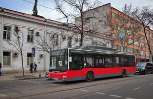 Как в Одессе будут ходить автобусы для пассажиров с ограниченными возможностями в июне