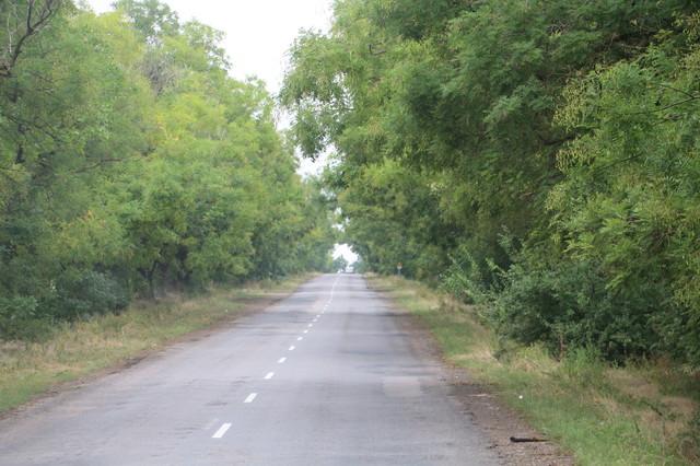 В Одесской области планируют восстановить старую Балтскую дорогу через Межлиманье