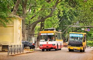 В Одессе третий раз за год меняют руководство транспортного департамента